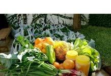 bolsones-verduras-pueblo-a-pueblo