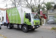 tigre-recicla-dia-verde-recoleccion