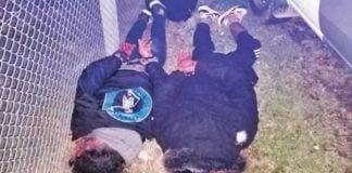 Persecucion Escobar Malvinas Tigre Cronica