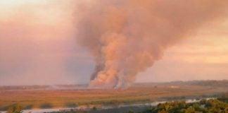 quema-pastizales-delta