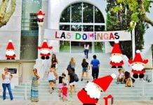 Las Domingas Navidad 2019