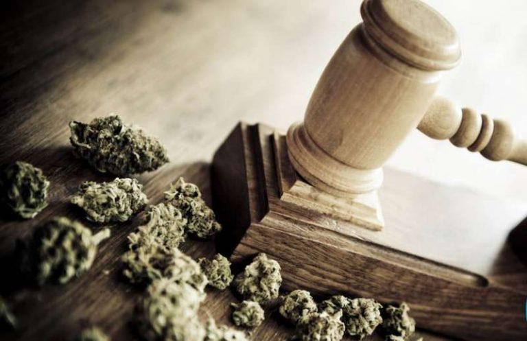 """La Defensoría reclamó medidas para que """"se deje de criminalizar"""" a los consumidores de cannabis"""