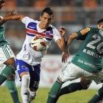 Tigre Palmeiras 2013