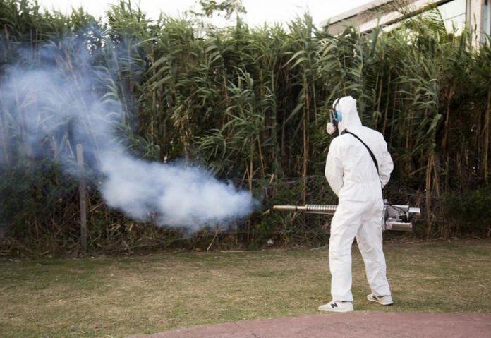 Dengue San Isidro