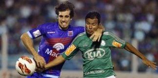 Palmeiras Tigre Como Llega