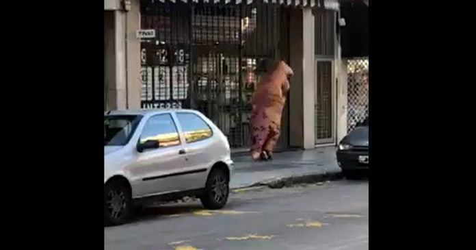 Video Dinosaurio Villa Martelli