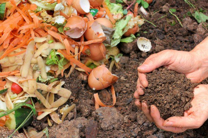Compost Casero800