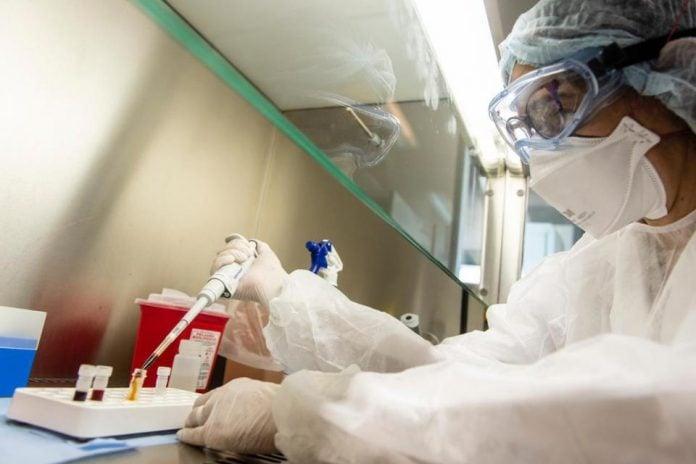 Coronavirus Estudio
