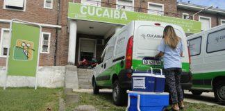 Cucaiba 1 0