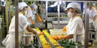 Protocolo Industrias Provincia