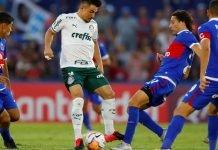 Tigre Copa Libertadores