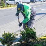 cuidado espacios verdes san fernando