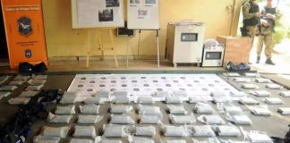 Operativo Leones Blancos Causa Narco