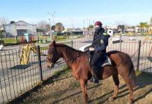 Policia Caballeria Pilar Controles Covid