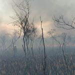 Foto Incendio Islas Escobar 4