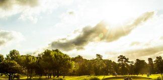 Golf (1)