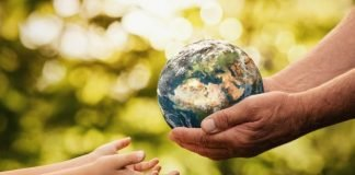 activismo ambiental