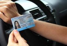 Licencia Conducir 5503