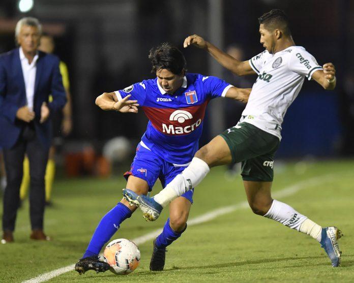 Palmeiras Tigre
