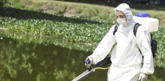 dengue malvinas