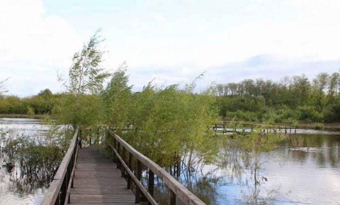 Reserva Natural Pilar 4493