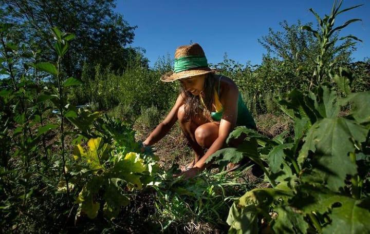 Bares San Martin Productos Agroecologicos 2