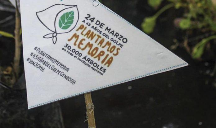 plantamos memoria 2