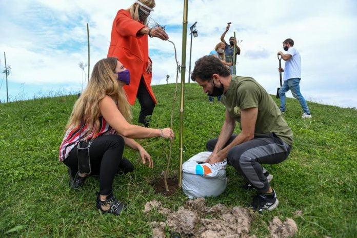 semana del árbol san fernando, plantan árboles