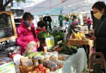 mercados bonaerenses feria frutas verduras 3