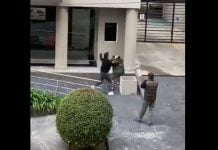 video vecinos olivos piñas calle