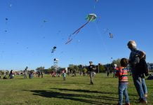 día de la niñez mdj viento a favor