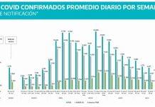 grafico casos covid provincia
